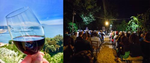 Jazz in Vigna: Musica, Cibo e Vino nei Vigneti dei Campi Flegrei