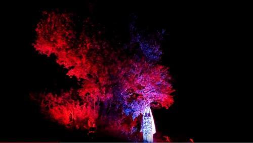 Megale Hellas Experience- il Sogno Degli Dei