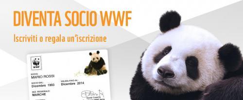 Assemblea dei soci WWF