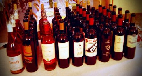 I vini calabresi del territorio cirotano in degustazione all'Enoteca Il Tralcio