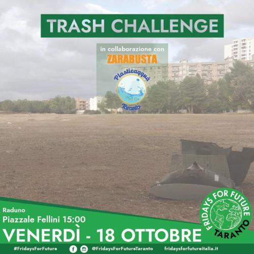 TrashChallenge - raccolta rifiuti volontaria