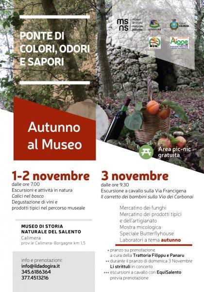 """""""Autunno al MUSEO"""""""