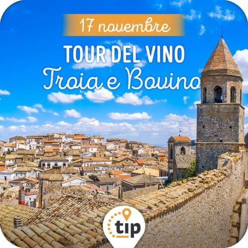 Tour del vino a Toia e Bovino