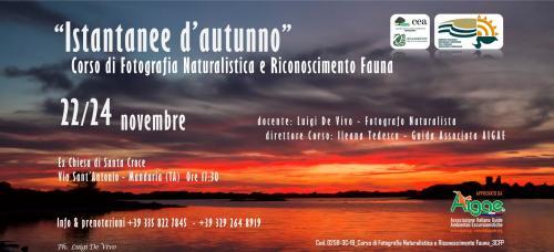 """""""ISTANTANEE D'AUTUNNO"""". Corso di Fotografia Naturalistica e Riconoscimento Fauna. APPROVATO AIGAE"""
