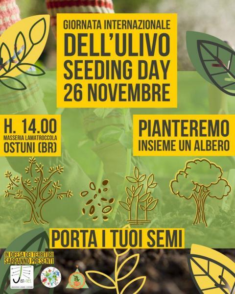 Giornata Internazionale dell'ulivo