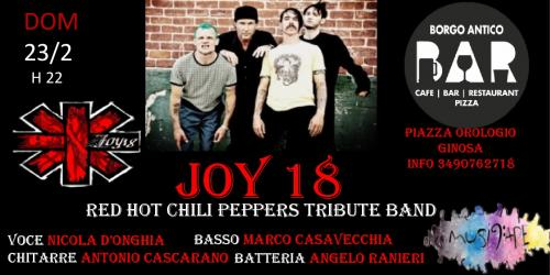 Joy 18 Red Hot Chili Peppers Tribute Band live @Bar Borgo Antico