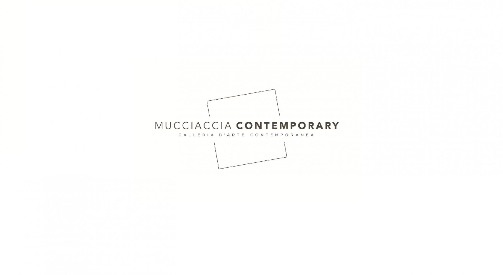 mucciacciacontemporary